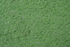 Artificial green grass. Carpet used for mini golf and decoration.  Look at my gallery for more backgrounds and textures Stock Photography