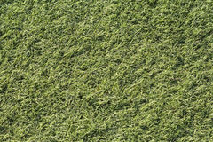 Artificial green grass shot from above, top-down. Stock Images