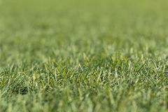 Artificial green grass shot low down and close up with small depth of focus. Stock Image
