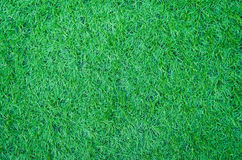 Artificial green grass texture for background Stock Image