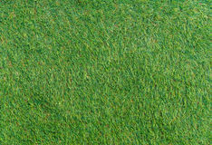 Artificial Green grass of texture for background Stock Photo