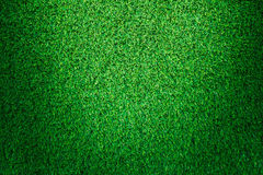 Artificial green grass texture background. Stock Images