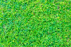 Artificial green grass texture for background Royalty Free Stock Photos