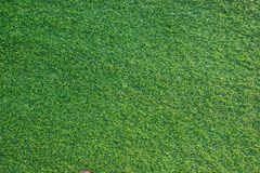 Artificial green grass texture for building indoor and outdoor decoration. Close up royalty free stock photo