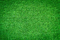 Artificial green grass texture for design. Stock Image