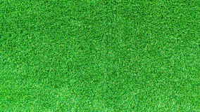 Artificial green grass texture for design. Royalty Free Stock Photo