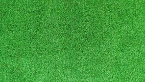 Artificial green grass texture or green grass background for golf course. soccer field or sports background Stock Images