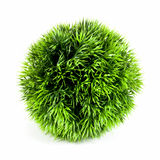 Artificial green plant in the ball shape. On a white background Stock Images