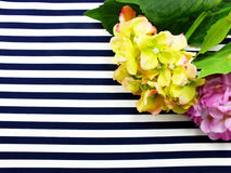 Artificial Hydrangeas flowers bouquet located on Blue and white stripes Royalty Free Stock Images