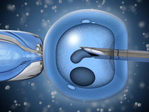 Artificial insemination. Very high resolution 3D rendering representing the process of artificial insemination Stock Photography