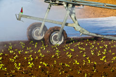 Artificial irrigation Stock Photo
