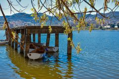 artificial lake of tirana in spring time royalty free stock image