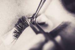Artificial lashes. eyelash extension procedure stock photo