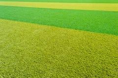 Artificial lawn Royalty Free Stock Photos