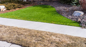 Artificial lawn vs natural Stock Photography