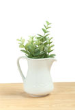 Artificial leafs in small pitcher Stock Photos