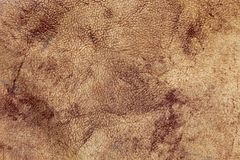 Artificial leather as a texture Royalty Free Stock Images