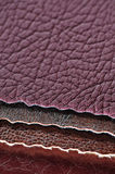 Artificial Leather Swatches Royalty Free Stock Photography