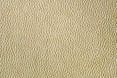 Artificial leather texture Stock Image