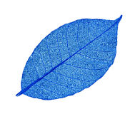 Artificial leaves. On black background royalty free stock images