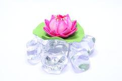 Artificial lotus on fake ice 02 stock image