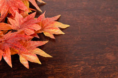 Artificial maple leafs over old wood background Stock Image