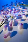 Artificial nails Stock Photos