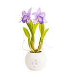 Artificial orchid flower Stock Photography