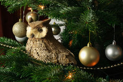 Artificial owl in Christmas Tree. An artificial owl sits on the branch of a real Christmas tree royalty free stock image