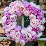 Peony flowers wreath Stock Photo