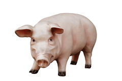 Artificial Pig Royalty Free Stock Photos