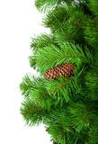Artificial pine tree branch Royalty Free Stock Photos