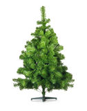 Artificial pine tree Stock Photos