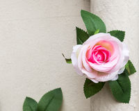 Artificial pink rose. Stock Image