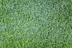 Artificial plastic green grass close-up, top view. A artificial plastic green grass close-up, top view royalty free stock photos