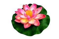 Artificial Plastic lotus Stock Photography