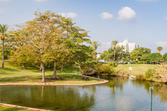 The artificial pond in park Royalty Free Stock Photos