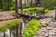 Artificial pond among pines. In a park with landscape design royalty free stock images