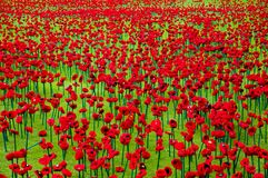 Artificial Poppies stock photography