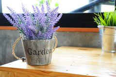 Artificial purple lavender flower in flowerpot on table. With daylight Stock Photography