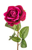 Artificial red rose isolated. Artificial red rose isolated on white Stock Photo