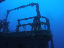 Artificial reef. Looking at an awesome wreck off the coast of south Florida stock photography