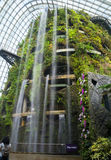 Artificial rock with a waterfall in a huge greenhouse. Waterfall in botanical garden in Singapore Stock Image