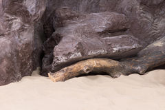 Artificial rocks with driftwood and sea sand Stock Image