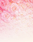 Artificial rose flower background Royalty Free Stock Photos