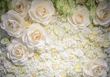 Artificial rose flower background Royalty Free Stock Image