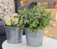Artificial Roses and Green Plants in Metal Pots stock photo