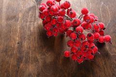 Artificial rowanberry on the table Royalty Free Stock Photography