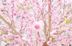 Artificial Sakura Flowers for Decorating Japanese Style Stock Photography