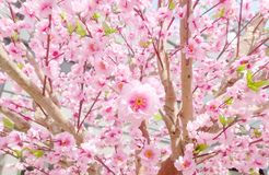 Artificial Sakura Flowers for Decorating Japanese Style Royalty Free Stock Photography